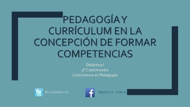 pedagoga y currculum 1 638