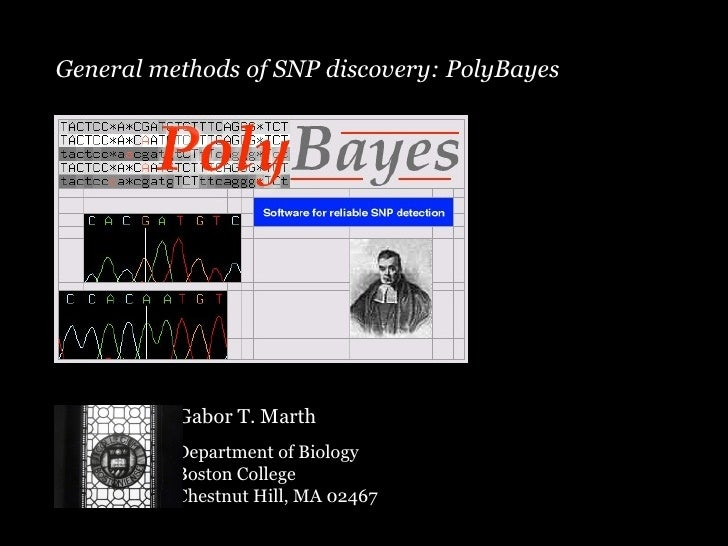 General methods of SNP discovery: PolyBayes Gabor T. Marth Department of Biology Boston College Chestnut Hill, MA 02467