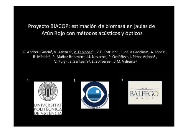 ProyectoBIACOP:estimación debiomasa en jaulas de Atún Rojo conmétodos acústicos yópticos G.Andreu‐Garcia1,V.Atien...