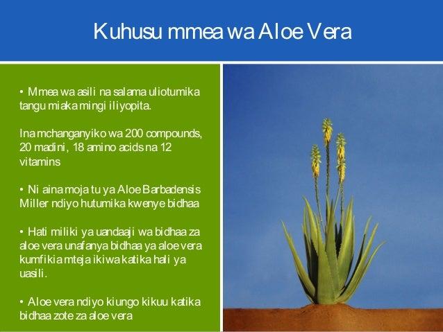 Kuhusu mmeawaAloeVera • Mmeawaasili nasalamauliotumika tangu miakamingi iliyopita. Inamchanganyiko wa200 compounds, 20 mad...