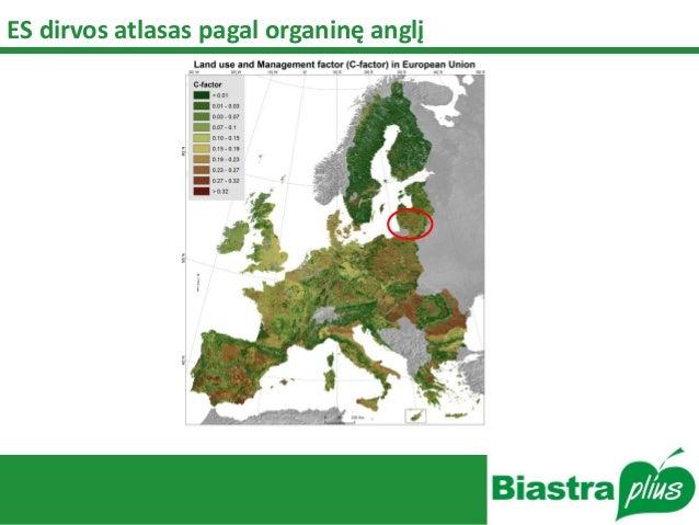 ES dirvos atlasas pagal organinę anglį