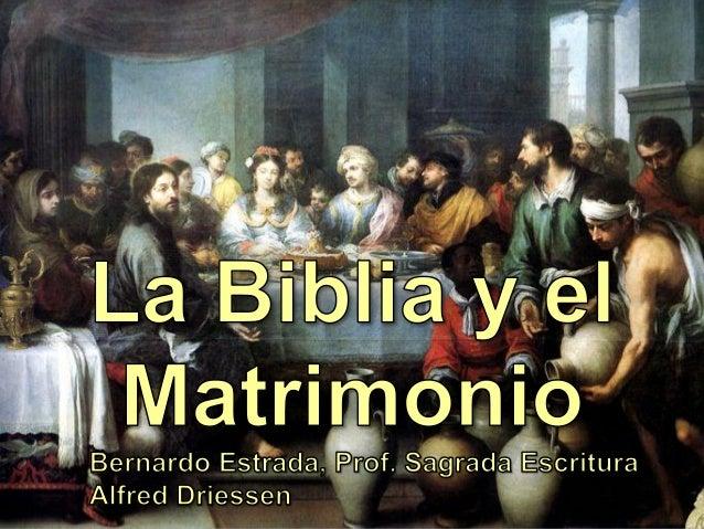 Biblia Y Matrimonio : Biblia y matrimonio
