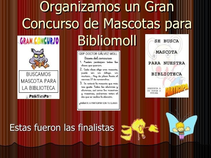 Organizamos un Gran Concurso de Mascotas para Bibliomoll Estas fueron las finalistas
