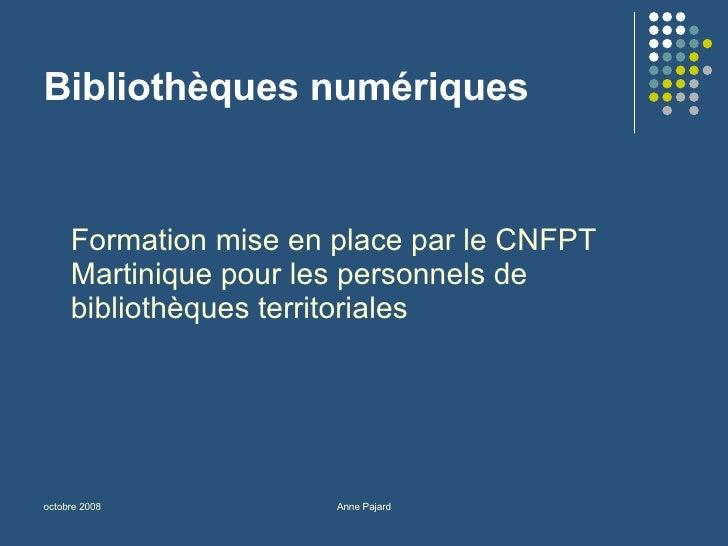Bibliothèques numériques <ul><li>Formation mise en place par le CNFPT Martinique pour les personnels de bibliothèques terr...