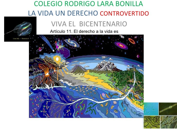 COLEGIO RODRIGO LARA BONILLA LA VIDA UN DERECHO  CONTROVERTIDO VIVA EL  BICENTENARIO Artículo 11. El derecho a la vida es ...