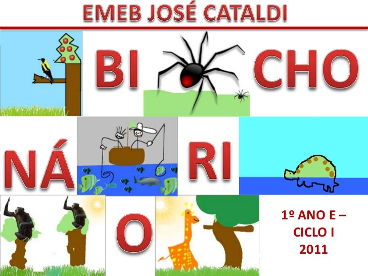1º ANO E –  CICLO I   2011