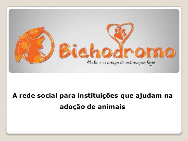 A rede social para instituições que ajudam na adoção de animais