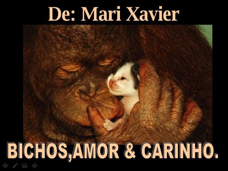 De: Mari Xavier BICHOS,AMOR & CARINHO.
