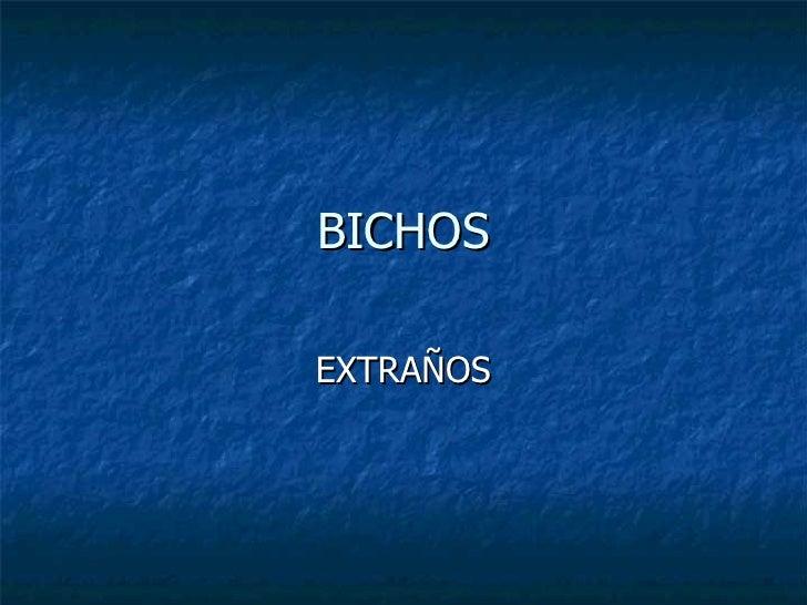 BICHOS EXTRAÑOS