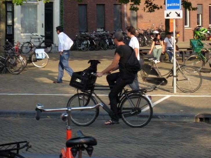 Bicicletas en Amsterdam Slide 11