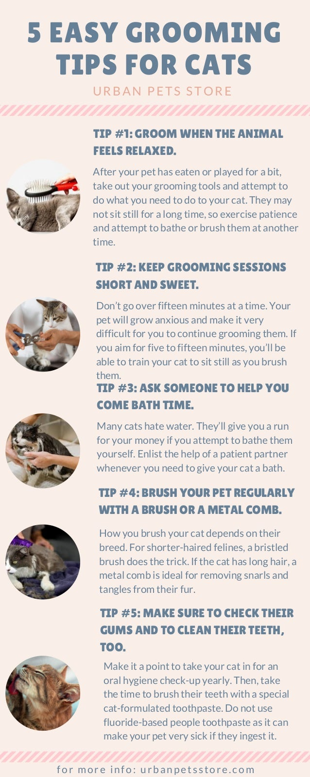 5 EASY GROOMING TIPS FOR CATS URBAN PETS STORE TIP #1: GROOM WHEN THE ANIMAL FEELS RELAXED. After your pet has eaten or pl...