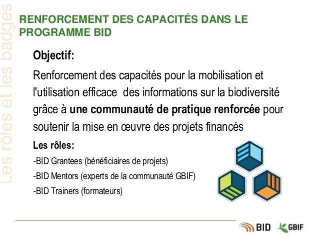 RENFORCEMENT DES CAPACITÉS DANS LE PROGRAMME BID Lesrôlesetlesbadges Objectif: Renforcement des capacités pour la mobilisa...