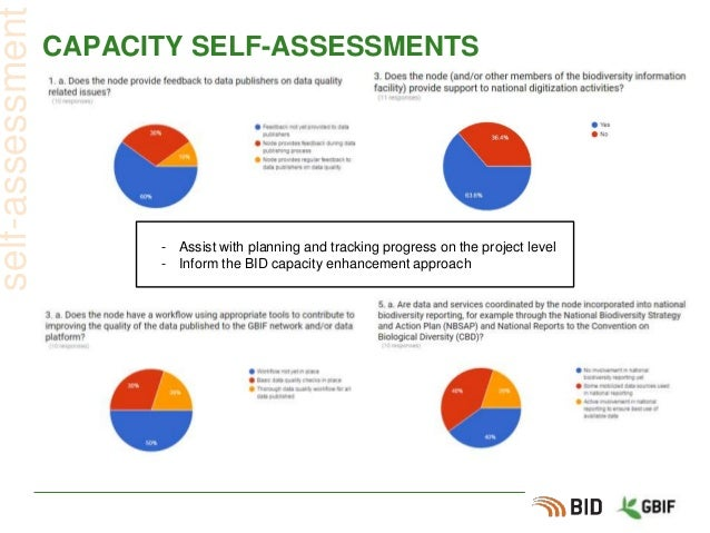 CAPACITY SELF-ASSESSMENTS self-assessment - Assist with planning and tracking progress on the project level - Inform the B...