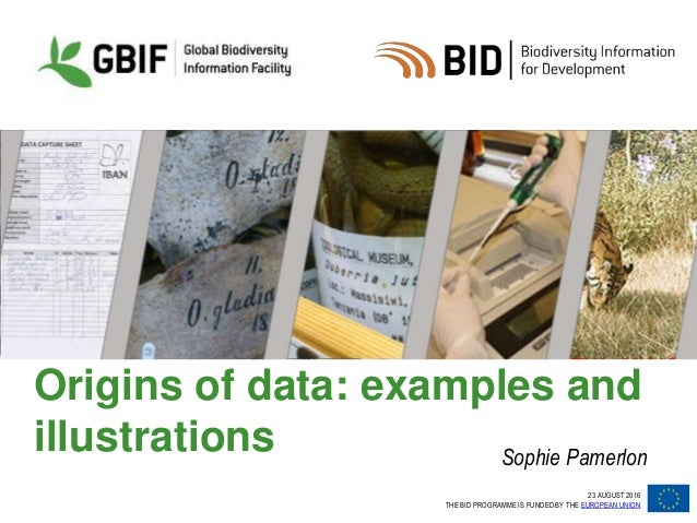 23 AUGUST 2016 THE BID PROGRAMME IS FUNDED BY THE EUROPEAN UNION Origins of data: examples and illustrations Sophie Pamerl...
