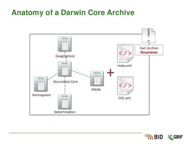 Anatomy of a Darwin Core Archive