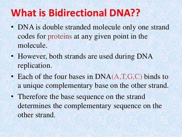 Bidirectional And Rolling Circular Dna Replication