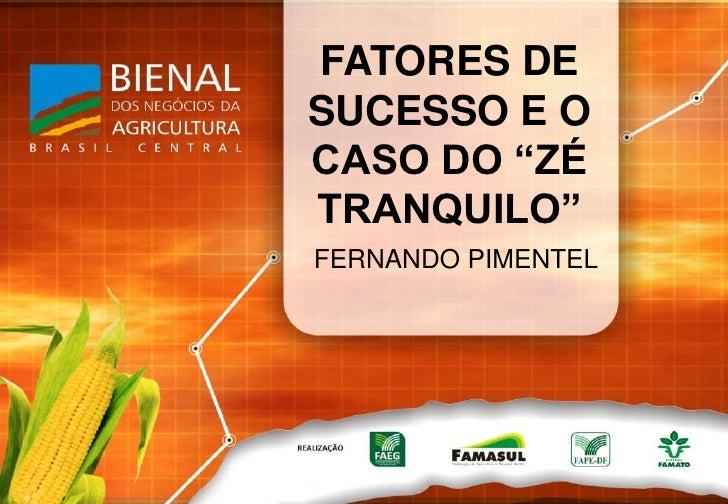 """FATORES DE SUCESSO E O CASO DO """"ZÉ TRANQUILO""""<br />FERNANDO PIMENTEL<br />"""