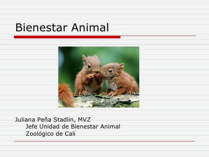 Bienestar Animal <ul><li>Juliana Peña Stadlin, MVZ </li></ul><ul><li>Jefe Unidad de Bienestar Animal </li></ul><ul><li>Zoo...