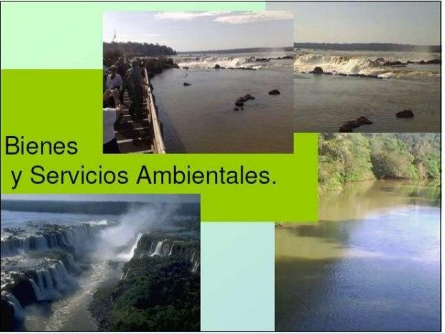 BIENESY SERVICIOS AMBIENTALES.