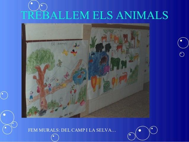 TREBALLEM ELS ANIMALS FEM MURALS: DEL CAMP I LA SELVA…