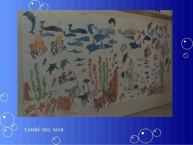 TAMBÉ DEL MAR