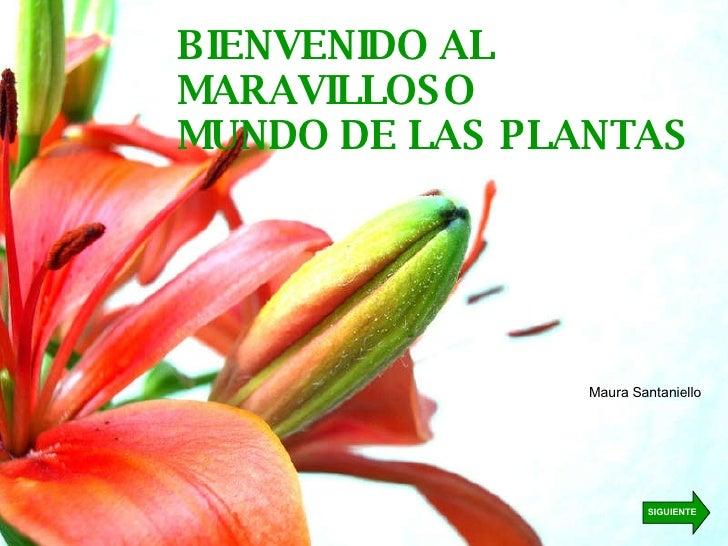 BIENVENIDO AL MARAVILLOSO MUNDO DE LAS PLANTAS Maura Santaniello SIGUIENTE
