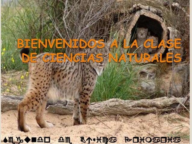 BIENVENIDOS A LA CLASE DE CIENCIAS NATURALES  