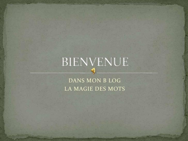 DANS MON B LOG <br />LA MAGIE DES MOTS <br />BIENVENUE <br />