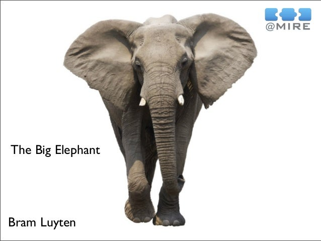 Bram Luyten The Big Elephant
