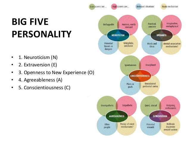 big five personality constructs Being a human today is complicated life can be challenging enough without  having to go against the grain of our basic personality which is.