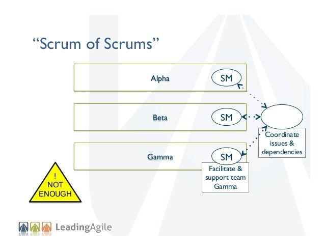 """Scrum of Scrums"" Alpha    SM    Beta    SM    Gamma   ! NOT ENOUGH  SM   Facilitate & support team Gamma  Coordinat..."