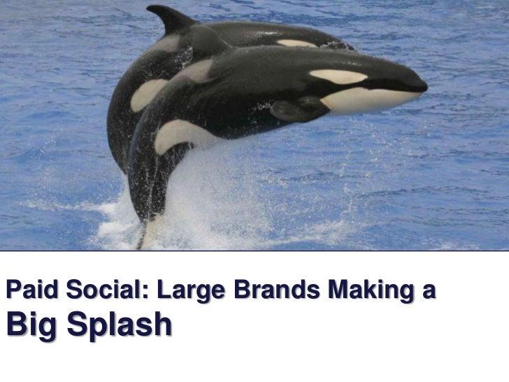 Paid Social: Large Brands Making a Big Splash<br />