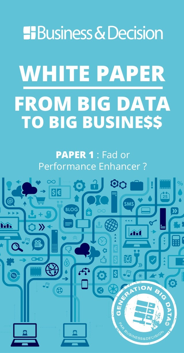 WHITE PAPER FROM BIG DATA TO BIG BUSINE$$ PAPER 1 : Fad or Performance Enhancer ?