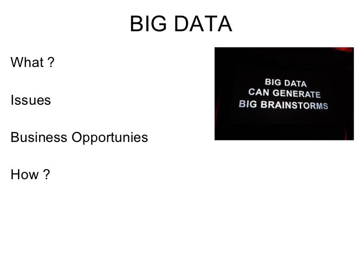 BIG DATAWhat ?IssuesBusiness OpportuniesHow ?