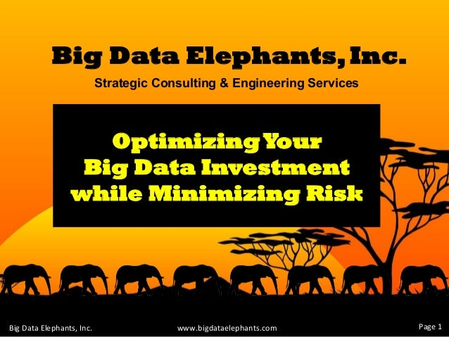 Big Data Elephants,Inc. Strategic Consulting & Engineering Services wwww.bigdataelephants.com	    OptimizingYour Big Data ...