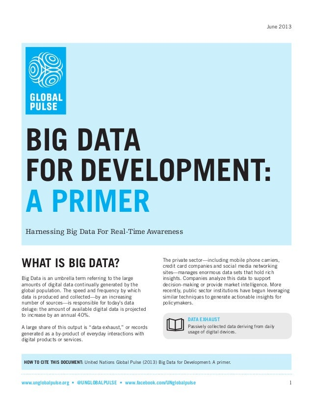 June 2013  BIG DATA FOR DEVELOPMENT: A PRIMER Harnessing Big Data For Real-Time Awareness  WHAT IS BIG DATA? Big Data is a...