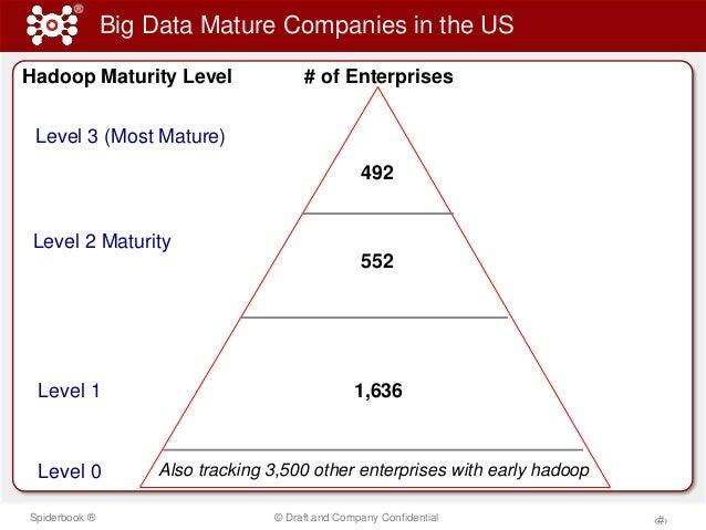 Big Data Maturity Model Slide 3