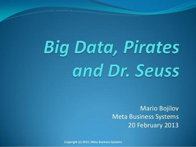 Mario Bojilov                                  Meta Business Systems                                      20 February 2013...