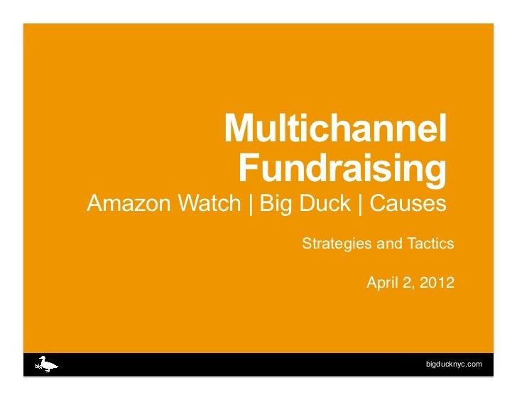 Multichannel            FundraisingAmazon Watch | Big Duck | Causes                   Strategies and Tactics              ...