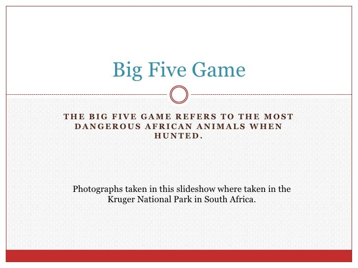 The big five GAME refers to the most dangerous African animals when hunted.<br />Big Five Game<br />Photographs taken in t...