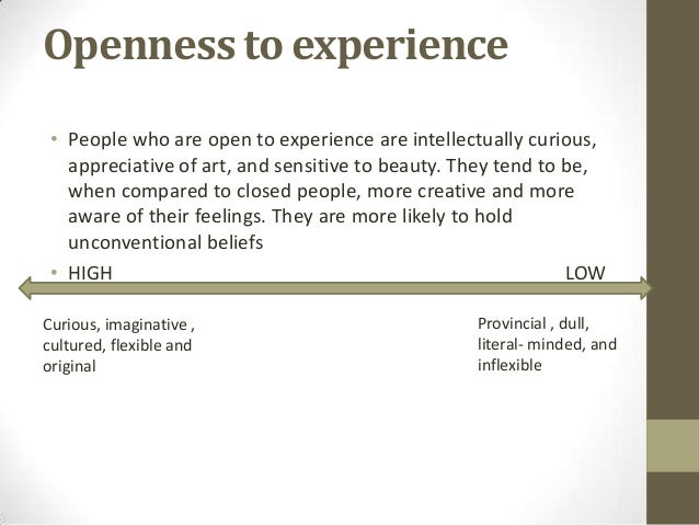 openness to experience example