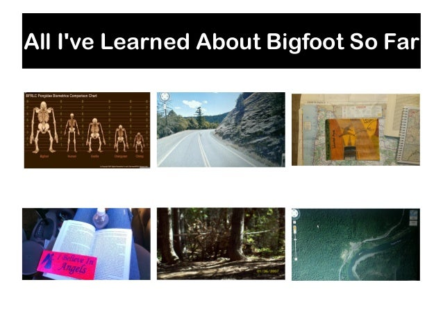 All I've Learned About Bigfoot So Far