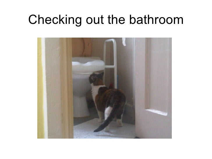 Checking out the bathroom