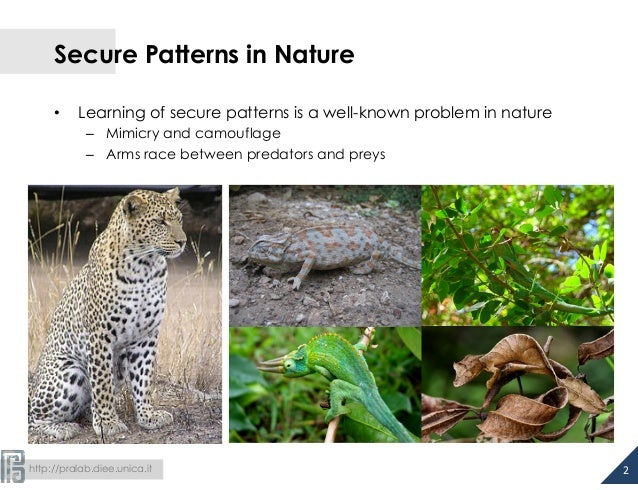 Secure Patterns in Nature  • Learning of secure patterns is a well-known problem in nature  – Mimicry and camouflage  – Ar...