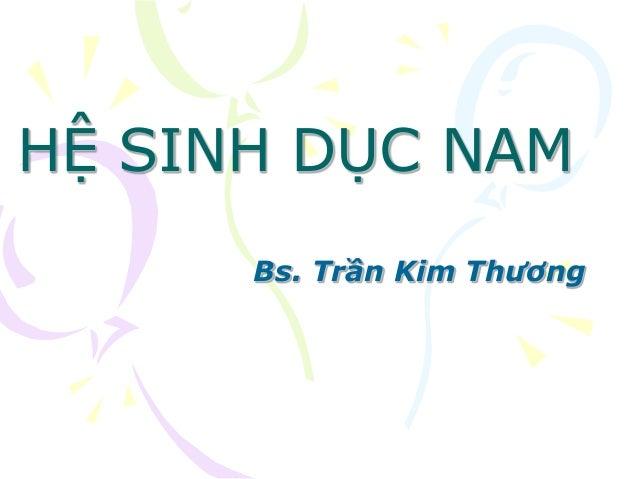 HỆ SINH DỤC NAM Bs. Trần Kim Thương