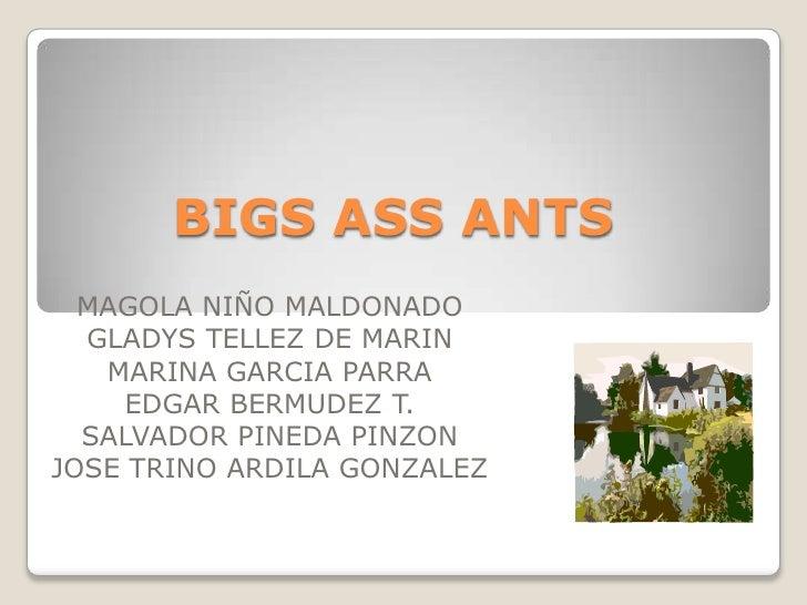 BIGS ASS ANTS<br />MAGOLA NIÑO MALDONADO<br />GLADYS TELLEZ DE MARIN<br />MARINA GARCIA PARRA<br />EDGAR BERMUDEZ T.<br />...