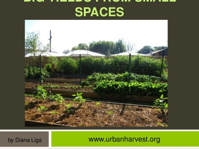 BIG YIELDS FROM SMALL SPACES  by Diana Liga  www.urbanharvest.org