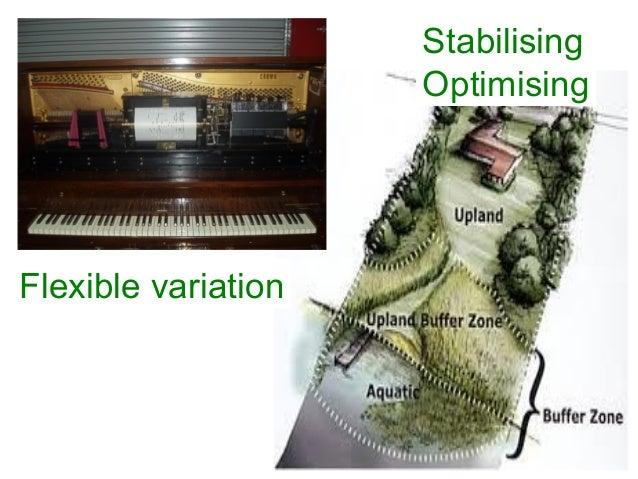 Flexible variation Stabilising Optimising