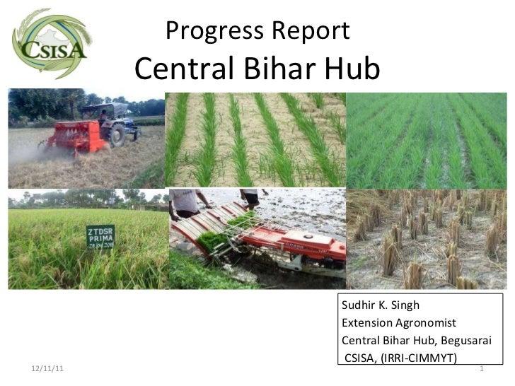 Progress Report Central Bihar Hub 12/11/11 Sudhir K. Singh Extension Agronomist Central Bihar Hub, Begusarai CSISA, (IRRI-...