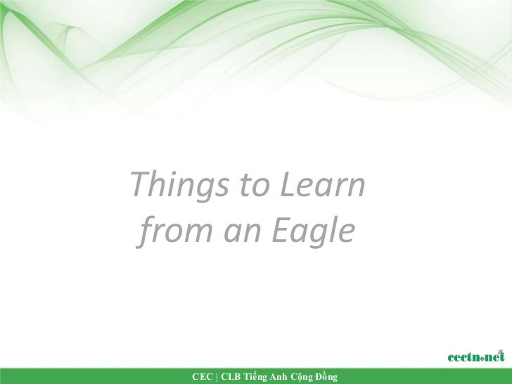 Things to Learn from an Eagle    CEC | CLB Tiếng Anh Cộng Đồng
